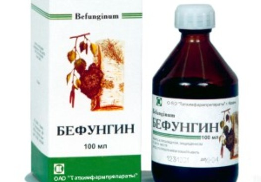 berezovyiy-grib-chaga