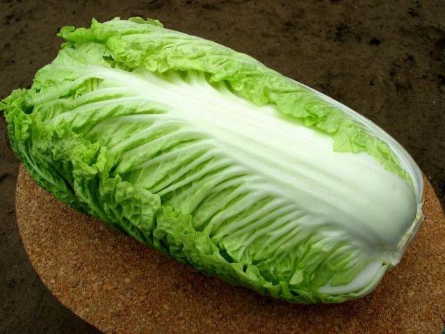 salatik.