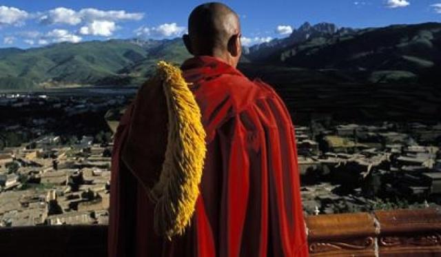 o-molochnom-gribe-iz-tibeta
