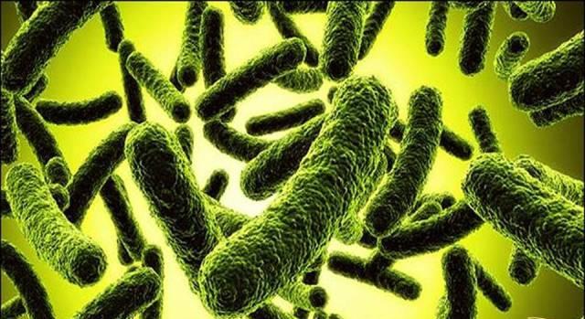 Как лечить дисбактериоз кишечника: симптомы, лечение