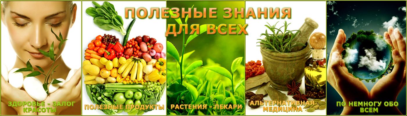 Полезные Знания для Всех