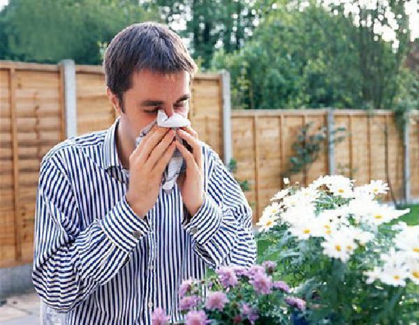 ob-allergii.