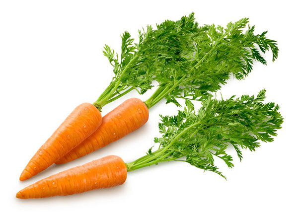 morkovka 02 Ботва моркови, ее полезные свойства