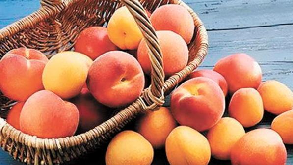 ah-kak-vkusen-abrikos