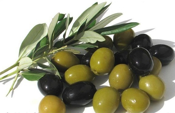 maslo-olivyi