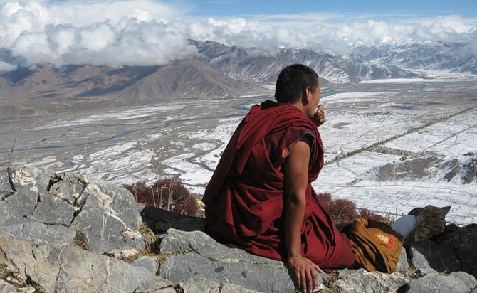 87870787 4603781 1 О молочном грибе из Тибета…