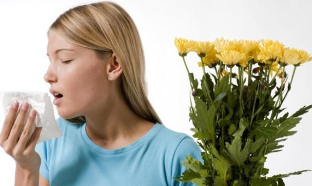 6 newborn presents Аллергия во время беременности