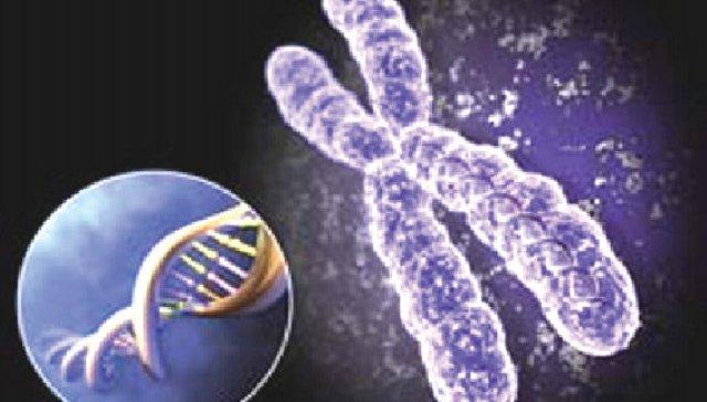 l 29607 Генетические болезни детей