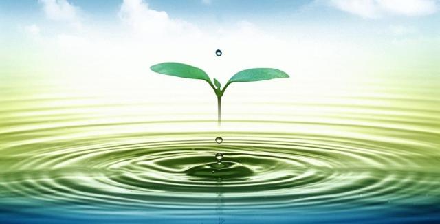 nature water Польза питья воды